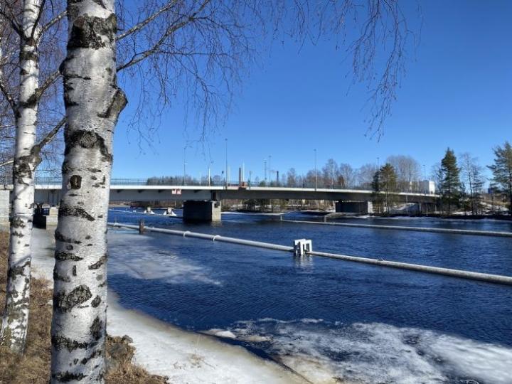 Pielisjoki alkoi olla jäistä vapaa aurinkoisena sunnuntaina 11. huhtikuuta.