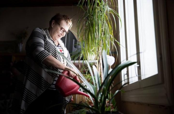 Aune Timoskainen leipoo, hoitaa paperiasioita ja kukkia sekä tekee monenlaista muutakin Utran puukoululla asukasyhdistyksen tiloissa.