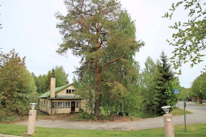 Tämän verran purkukuntoisesta talosta näkyy naapurin, Kiteenhovin, parkkipaikalle.