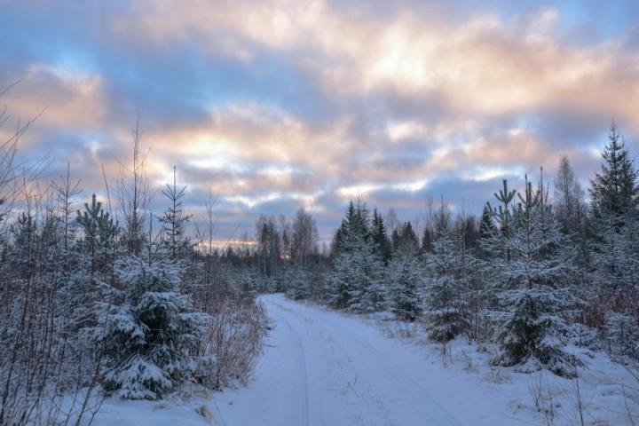 Tältä näytti Nurmeksen Saramolla 25.11. Lukijan kuva: Maija Savolainen