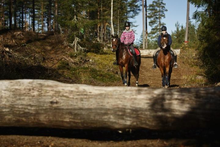 Salli Henttu (vas.) ja Oona Nieminen ratsastivat Ilmavoimien vanhalla harjoitusalueella Jämsän Hallissa viikko sitten. LEHTIKUVA / RONI REKOMAA