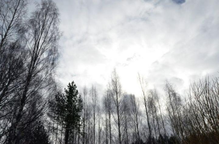 Suomea lähestyy matalapaine Baltiasta. Se tuo maanantaina aamusta alkaen pilvisyyttä Etelä-Suomeen.  LEHTIKUVA / EIJA KONTIO