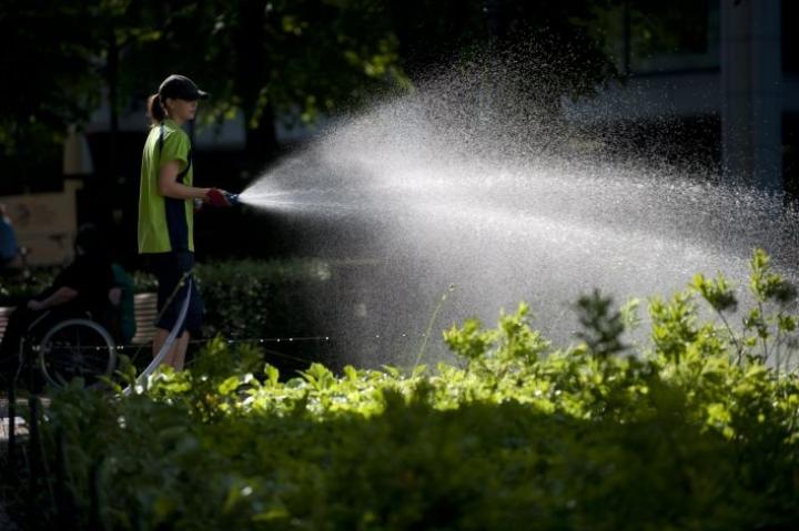 Kuntatyönantajien tiedustelun mukaan kunnat työllistävät tai tukevat noin 59000 nuoren kesätöitä. Viime kesänä kesätöitä tarjottiin noin 40000 nuorelle.  LEHTIKUVA / JUSSI HELTTUNEN