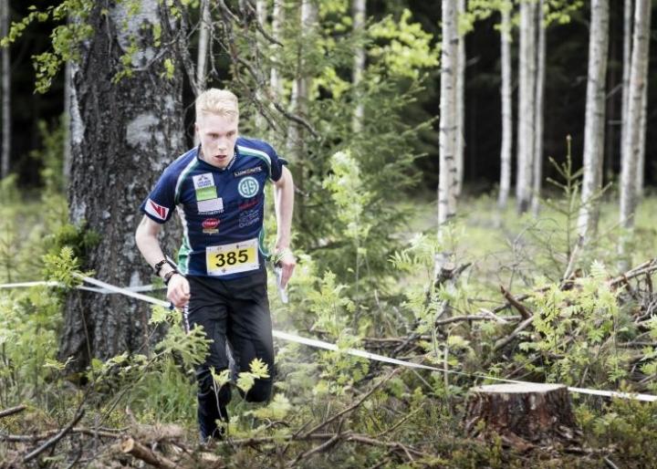 Olli Ojanaho rynnisti keskimatkan MM-katsastusvoittoon Polvijärvellä.