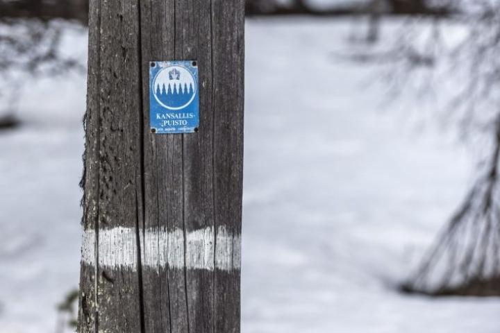 Metsästys kansallispuistossa on poliisin mukaan sallittua muun muassa paikkakuntalaisen oikeudella. Maastopyöräilijä kuoli metsästäjän luotiin lauantaina Urho Kekkosen kansallispuistossa. LEHTIKUVA / Otto Ponto