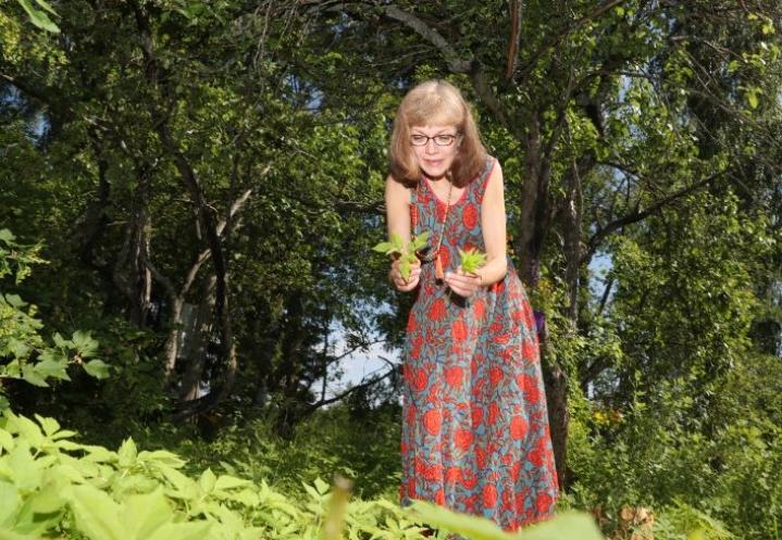 Raija Kivimetsä kertoo, että vuohenputki on yleinen rikkakasvi, mutta se on syytä opetella tuntemaan ennen ravinnoksi käyttöä.