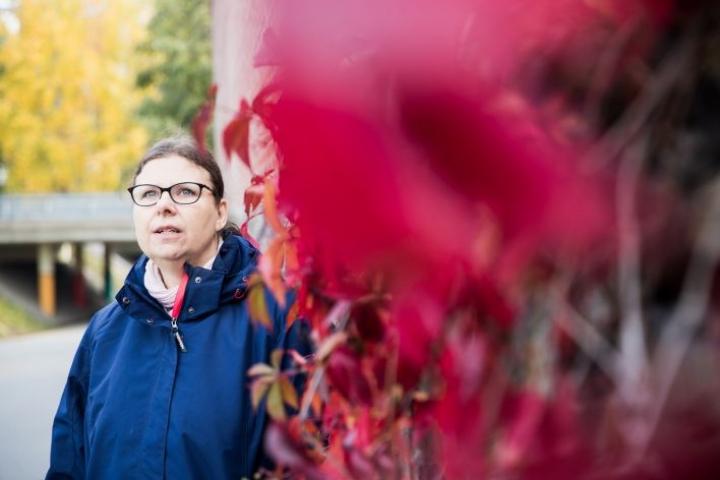 Tutkija Pirjo Pölläsen ihannemaailmassa vallitsisi kaikenkattava solidaarisuus ja kyseenalaistamaton ihmisarvo.