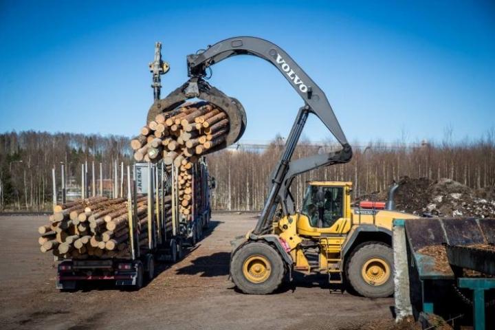 Stora Enson Uimaharjun sahalla jalostetaan mäntytukkia sahatavaraksi.