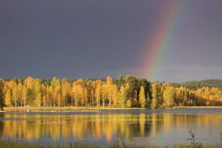 Pohjoiskarjalaiset viihtyvät maaseudulla.