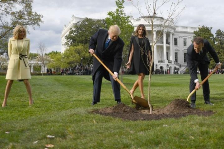 Kuva Macronista ja Yhdysvaltain presidentistä Donald Trumpista istuttamassa nuorta tammea Valkoisen talon puutarhaan symboloi presidenttien silloisia varsin lämpimiä välejä. LEHTIKUVA / AFP