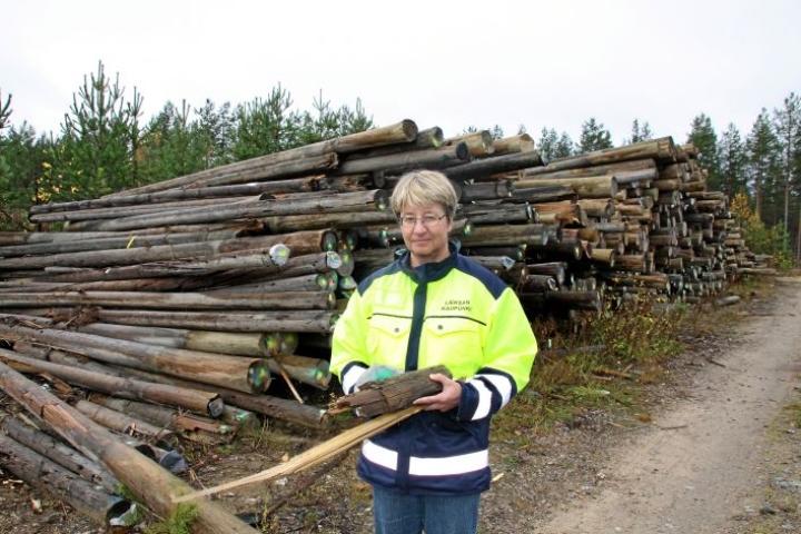 Riitta Laatikainen arkistokuvassa vuodelta 2012.