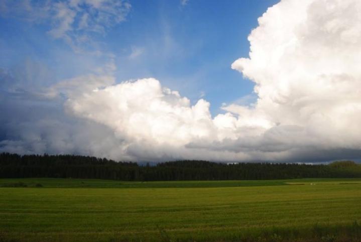 Alkuviikko on Pohjois-Karjalassa pilvinen ja sateinen, mutta viikon puolivälissä sää selkenee ja lämpötilat kohoavat.