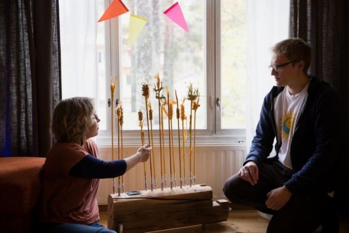 Viljasoitin on Jaap Kleveringin tekemä. Kuvataiteilija Sanni-Maaria Puustinen on tehnyt korret. Teos on tehty vanhan saunan hirsistä, vaijerista ja puuhelmistä.