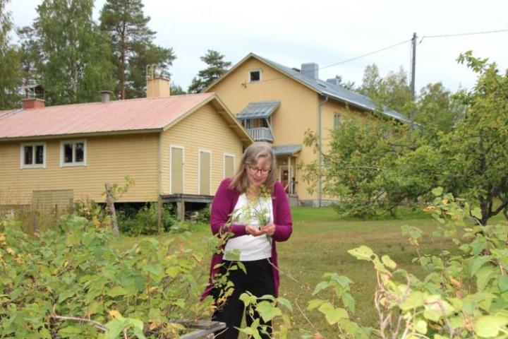 Pastori Pauliina Kainulainen yllättyi, miten vilkasta ja työlästä on toimia retriittipappina Enonkosken luostarissa. Pihapiirissä riittää työtä talkoolaisille.
