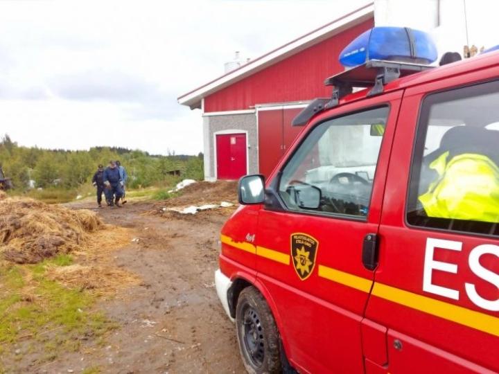 Perjantaina kadonnutta etsi viisi koirapartiota ja yli kolmekymmentä Vapaaehtoisen pelastuspalvelun henkilöä.
