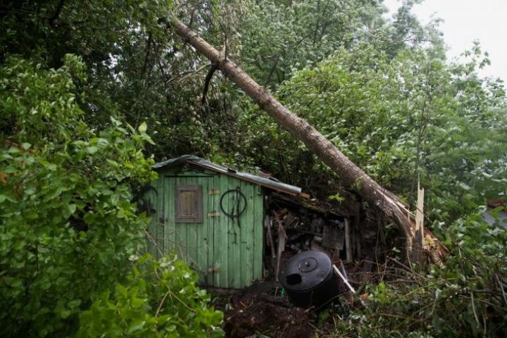 Joensuun keskustassa Länsikadulla Jukka Vaarin pihasta kaatui useampi puu. Puut hipoivat autoa ja rakennuksia, mutta kello 21.30 mennessä vahinkoa oli tullut vain pensasaidalle.