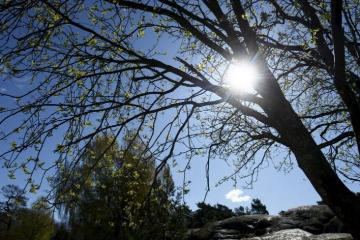 Äitienpäivä näyttää olevan viimeinen lämmin päivä vähään aikaan, Ilmatieteen laitokselta ennustetaan. LEHTIKUVA / OLIVIA RANTA