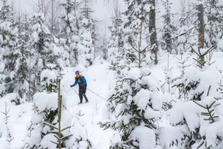 Lunta riittää tänäkin vuonna Maisemahiihdon laduilla.