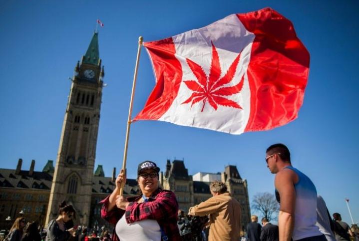 Kanada laillisti kannabiksen viime vuonna. Ensitietojen mukaan kannabiksen käyttö Kanadassa ei ole lisääntynyt merkittävästi.  LEHTIKUVA / AFP