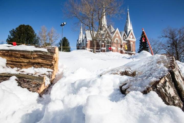 270-vuotias honka on enää muisto vain Joensuun kirkonmäen pulkkamäessä.